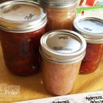 applesauce-and-salsa
