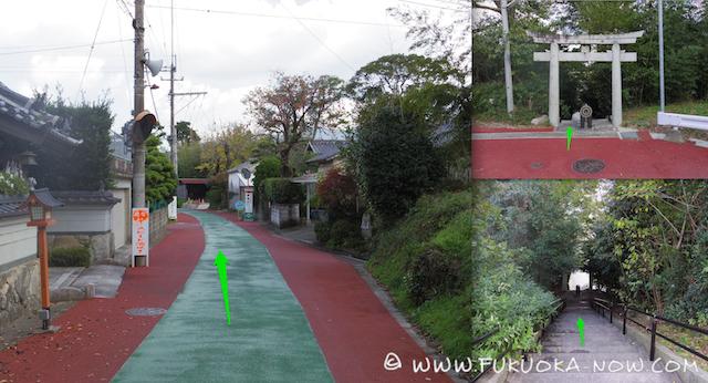iimoriyama13