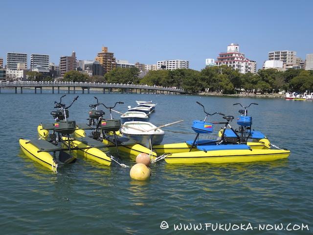 fn184 ohori boats 101