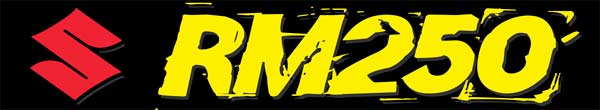 suzuki_rm_250_swingarm_decal_3