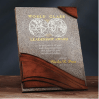 Image of a nonprofit award that is Multi-toned Moonstone finish Stonecast plaque with realistic wood grain finish.