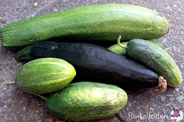gartengl ck mit zucchini gurken und erbsen berlin. Black Bedroom Furniture Sets. Home Design Ideas