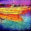 MARINAS-Dee Ashley-small_6665616027