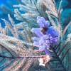 DIVING-Scuba Ben-small_2428957994