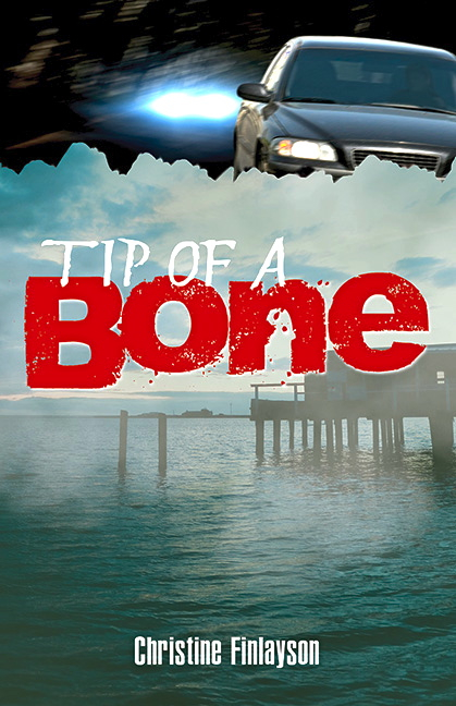 Tip of a Bone  cover image copy