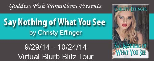 Say Nothing Of What You See_Banner