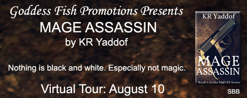 Assassin banner