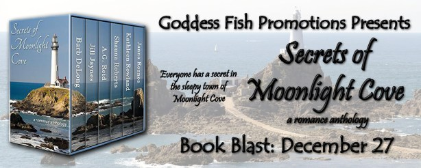secrets-of-moonlight-cove-banner