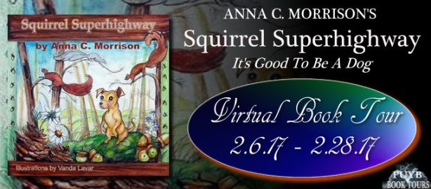 Squirrel Superhighway banner