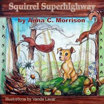 Squirrel Superhighway cover