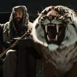 King Ezekiel Tiger Shiva