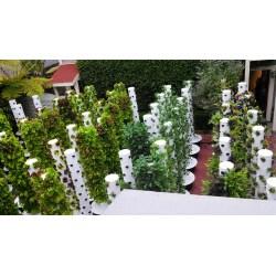 Small Crop Of Backyard Vertical Garden
