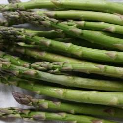 asparagus-761220_1920