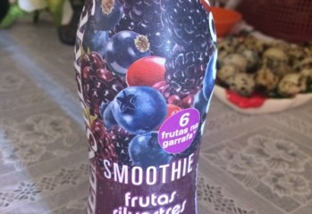 Smoothie Frutas Silvestres Queensberry