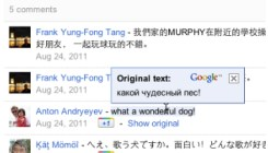 Google Translate for Google Plus