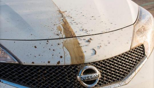 Nissan carro que se limpia solo