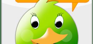 choqok-greenish