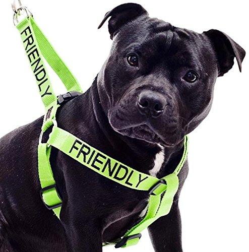 AMICAL-Vert-Couleur-Coded-Nylon-non-Pull-Grand-L-XL-Harnais-connu-comme-Friendly-prvient-les-accidents-en-avertissant-les-autres-de-votre-chien--lavance-0-0
