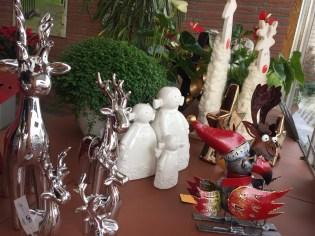 Weihnachten_Gärtnerei_Enge_2016_Advent_4