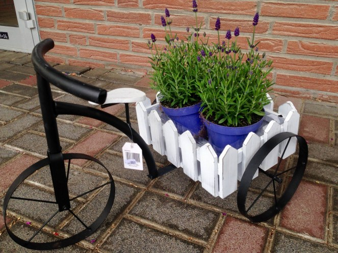 Dekoration_Dreirad_Dreiräder_Blumen_Erwitte_Gärtnerei_Enge_Trend_Deko_Garten_Gartendekorationen_Gaertnerei