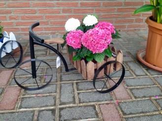 Dekoration_Dreirad_Dreiräder_Erwitte_Gärtnerei_Enge_Trend_Deko_Garten_Gartendekoration_Gaertnerei