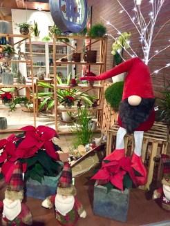 Weihnachten_Deko_Gärtnerei_Enge_Dekoration_7