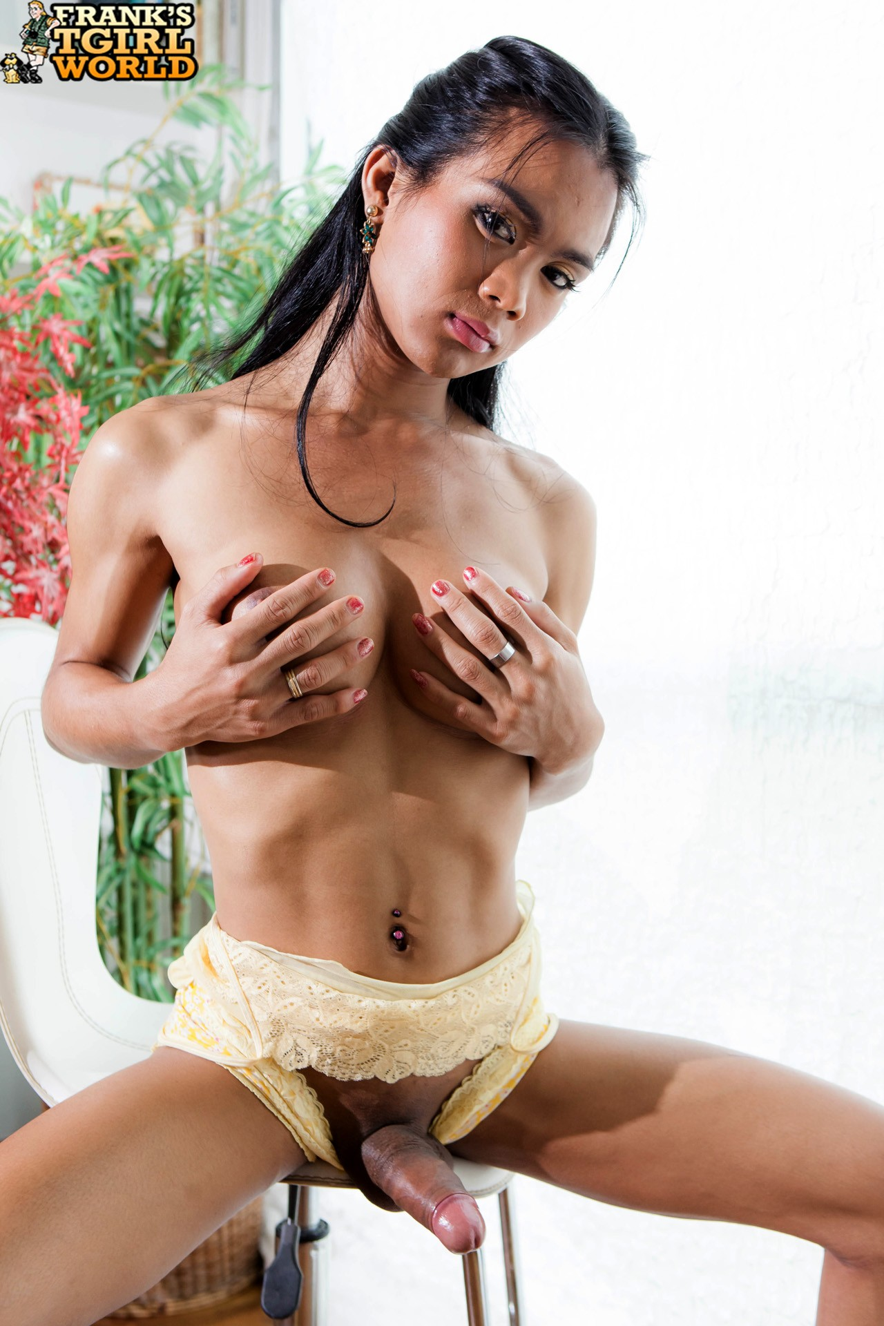 ladyboys shemale star db