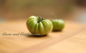 Green tomatoes contain tomatidine which helps build muscle mass and increases stamina while exercising.