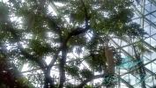 Garden_Hat_Garden_Adventures_Mitchell_Park_9_14