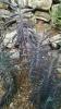 Garden_Hat_Garden_Adventures_Mitchell_Park_Desert_Dome_9_17