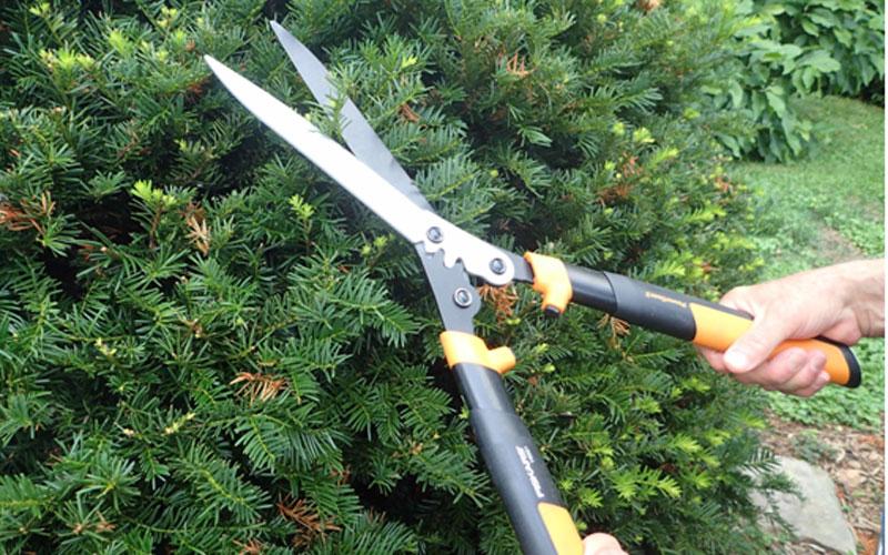 Fiskars powergear ii hedge shears hs551 product review for Lightweight garden shears