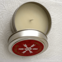 A Handmade Christmas Gift - Bayberry Candles