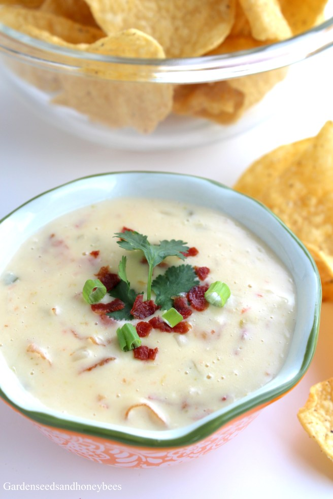 Queso Blanco Chorizo or Bacon Dip