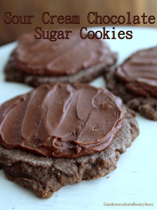 Sour Cream Chocolate Sugar