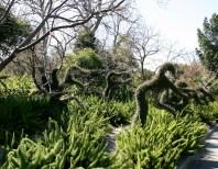 Melbourne's Botanic Garden