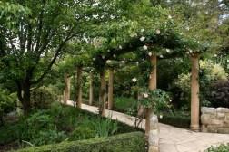 Guestlands garden2