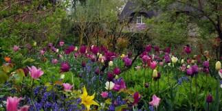 Hidcote Manor - Day 8