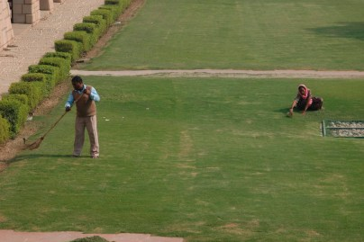 Painstaking lawn maintenance at the Gandhi memorial, New Delhi