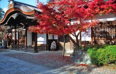 Kiyomizudera Gate Karahafu