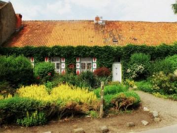 Netherlands - home garden in Borsbeek Photo tpsdave