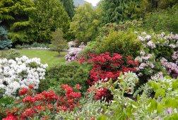 GALLERY-GD1605-08-Spring-at-Chantecler-copyright-Chantecler-Gardens