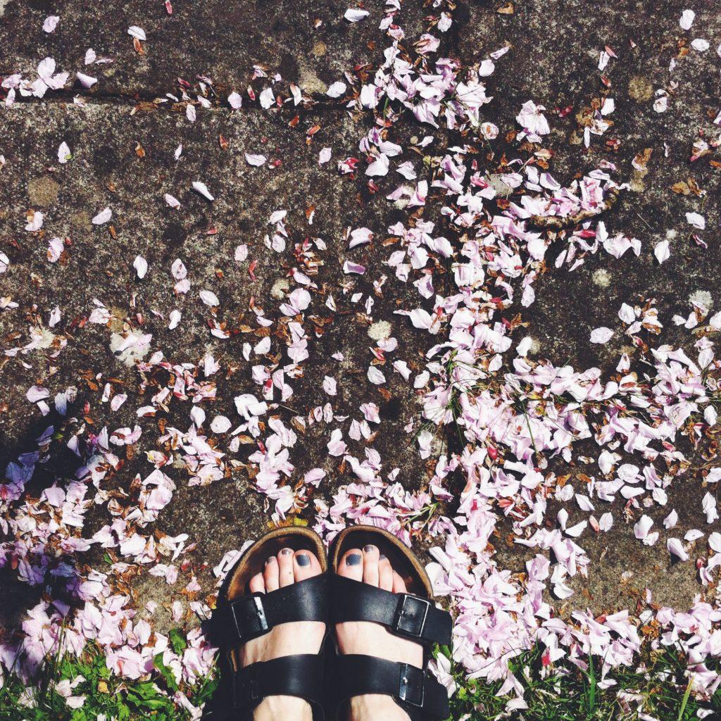 Birkenstocks and blossom