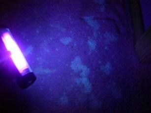 xixi carpete luz negra