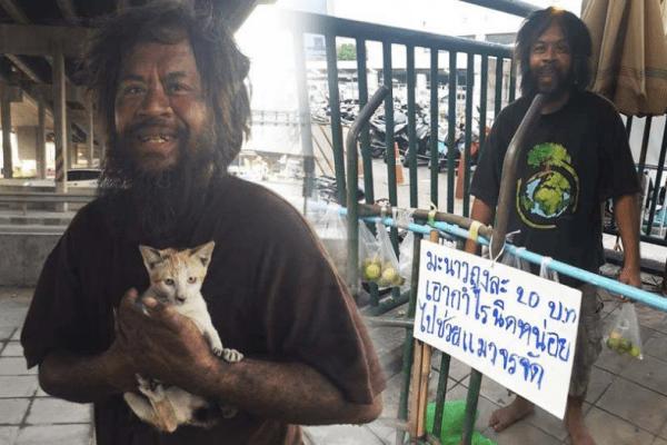 homem vende limoes gatos abandonados morador de rua