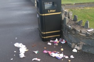 New litter bins to put seagulls in a flap
