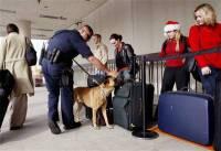 031225_airport_security_hmed6a.hmedium