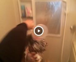 【Vine動画】風呂で体を洗っている最中の素っ裸筋肉系イケメン男子に氷水の洗礼がw