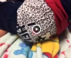 【Vine動画】可愛らしいパンツを降ろしたら、DKのきれいなケツが出てきたぞ!www