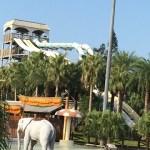 2014年台湾旅行記3八仙水上楽園