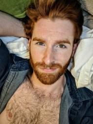 Ginger 26
